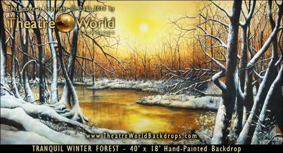 Tranquil Winter Forest Scenic Backdrop