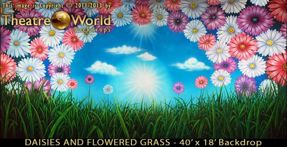 Daisies and Flowered Grass Scenic Backdrop