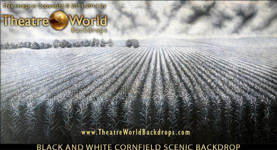 TheatreWorld's Professional Scenic Black and White Cornfield Backdrop
