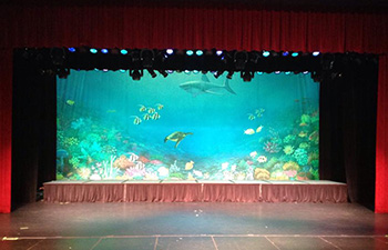 Coral Kingdom Backdrop at the Largo Cultural Center