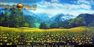 mountain-meadow-backdrop-blog-image