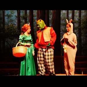 Tranquil Woods Professional Scenic Backdrop Shrek the Musical Production