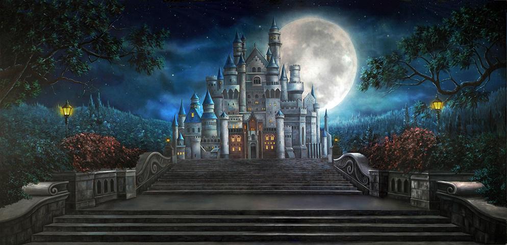 Professional Cinderella Enchanted Castle Scenic Backdrop